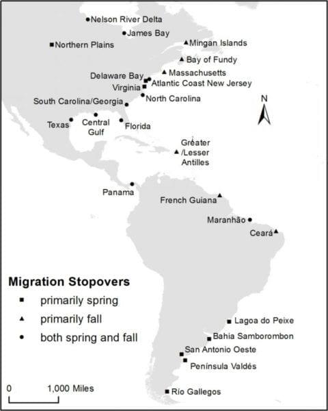 knownmigrationstopovers
