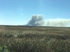 Prescribed burn underway in Alligator River Wildlife Refuge