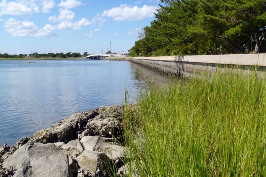 Federation asks Corps to fast track permits for living shorelines